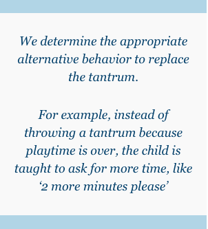 appropriate alternative behavior